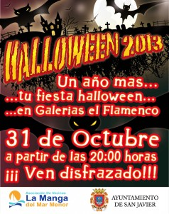 8x3_Flamenco 2013 hallo g