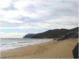 Ordenacion estival accesos playa